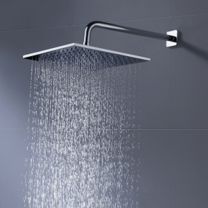 the shower experience shower head review