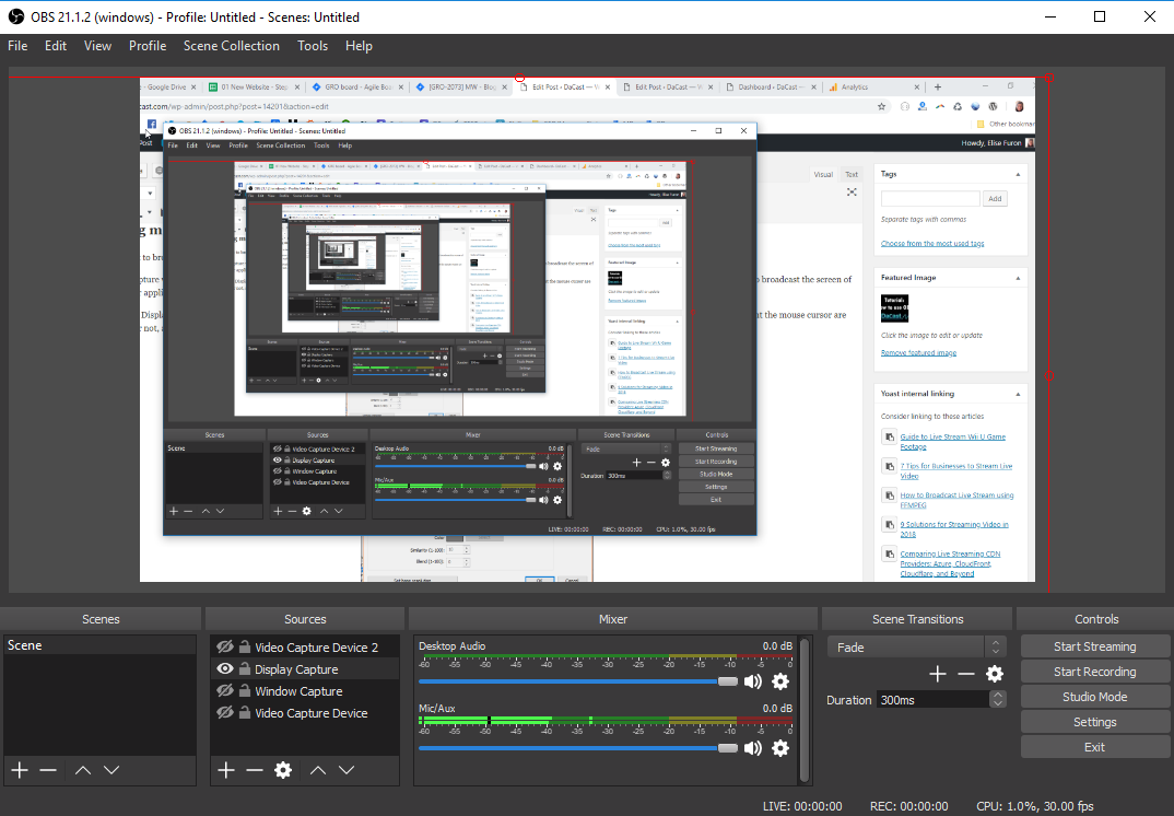 streaming video capture software review